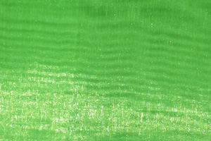 Neon Green Mirror Organza Chair Sashes Sashes & Ties